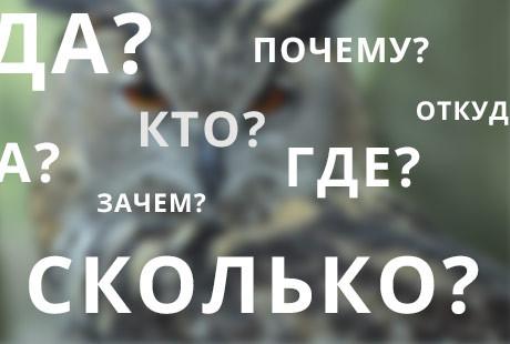 Voprositelnye-slova-v-zagolovkah-3